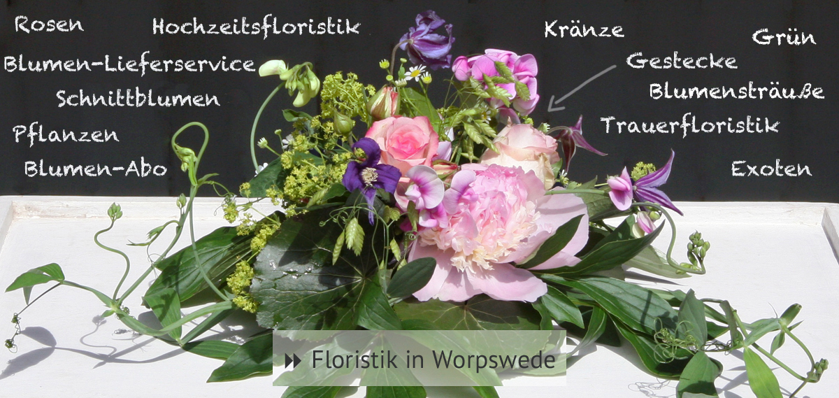 ▶︎ Floristik in Worpswede